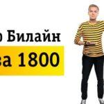Тариф Билайн «Все за 1800».Описание тарифного плана