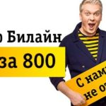 Тариф Билайн «Все за 800» (постоплатный).Описание тарифного плана